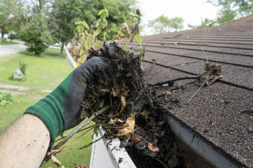 For you new homeowners, don't forget to clean out your gutters before they look like this